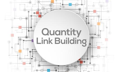 Quantity Link Building